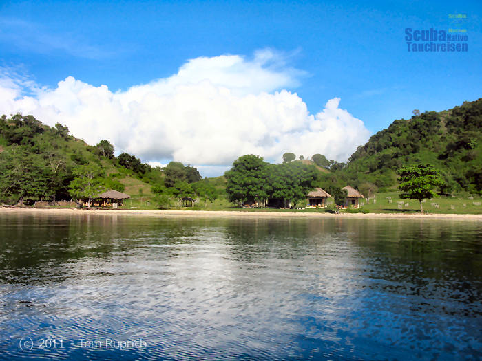 Pearl beach resort sekotong lombok scuba native tauchreisen - Lombok dive resort ...