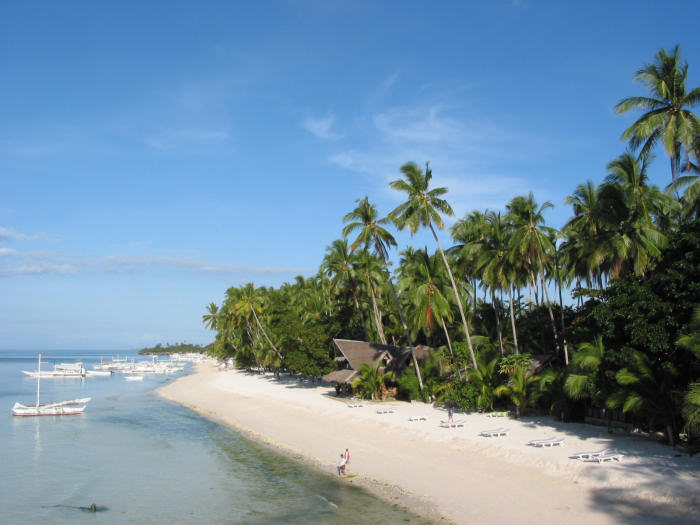 Hotels In Alona Beach Panglao
