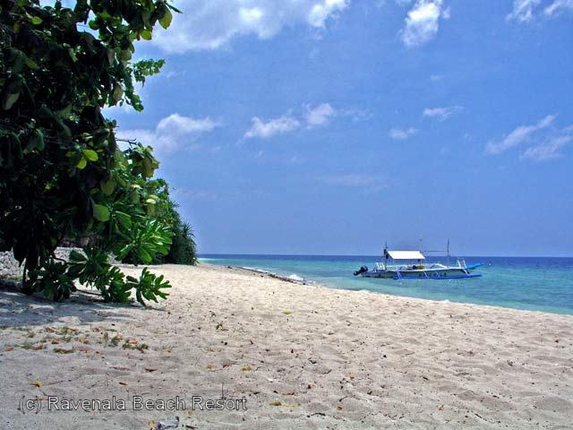Ravenala Beach Resort Moalboal Bungalows Am White Beach Auf Cebu