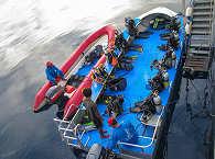 Tauchboot der MSY Seahorse – Tauchen Raja Ampat