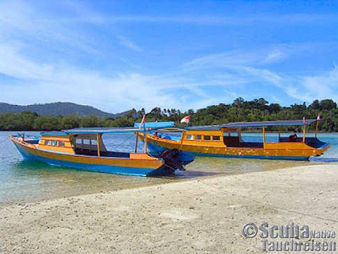 Tauchbasis Sulawesi