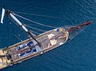 Das Safariboot aus der Vogelperspektive
