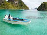 Raja Ampats Inselwelt