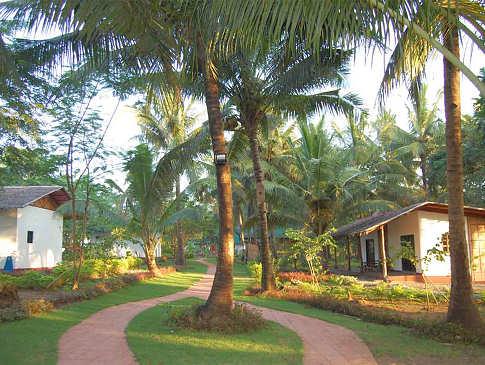 Palmen und Blumen in der Resortanlage