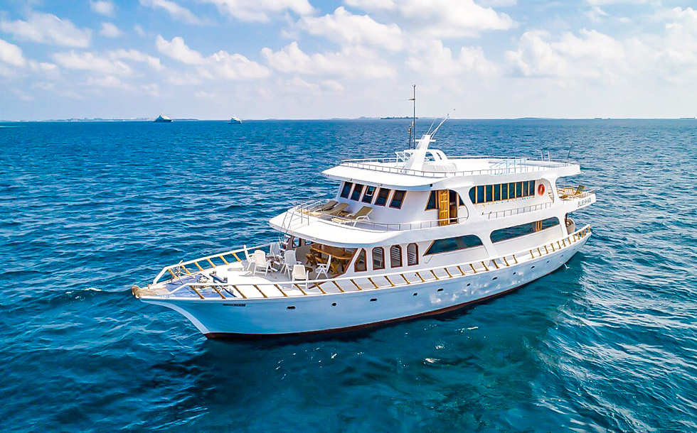 Blue Shark One – Eco Pro Divers Malediven