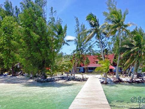 Carp Island Resort Jetty