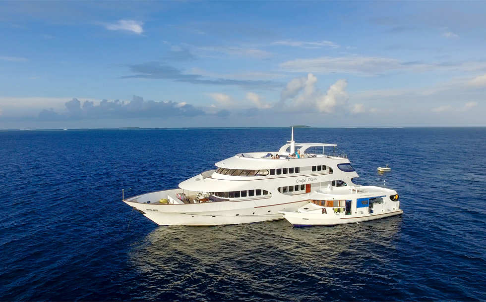 Carpe Diem Maledives mit ihrem Tauch-Dhoni