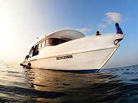 Tauchboot der Carpe Diem – Tauchsafari Malediven