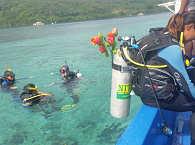 Tauchen mit den Celebes Divers