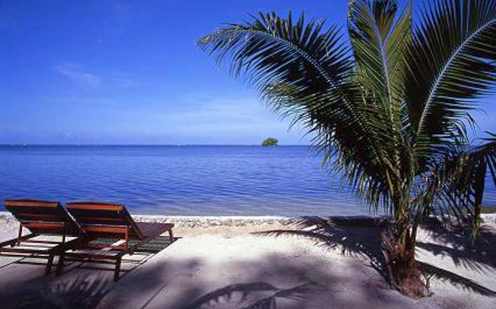 © Dolphin Bay Resort