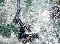 Ducks Divers Philippinen