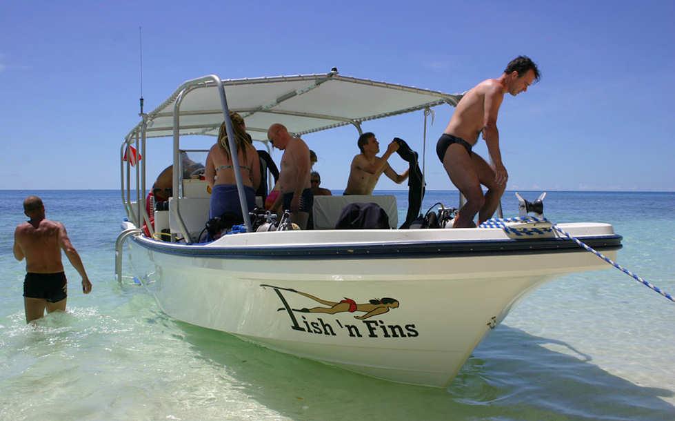 Tauchboot Fish 'n Fins Palau