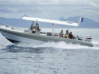 Fluid-Tauchboot Zebubbles