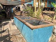Kalimaya Dive Resort