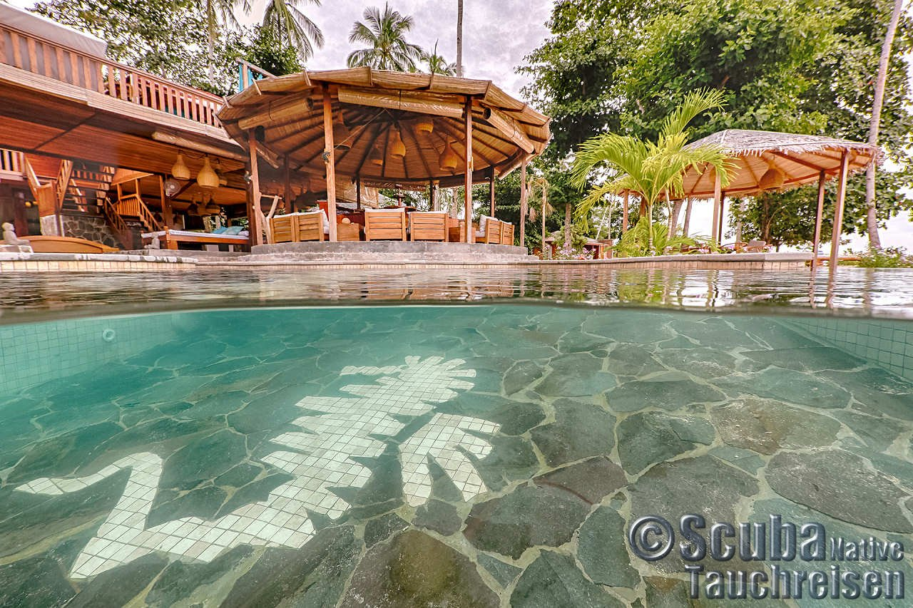 Kuda laut boutique dive resort siladen indonesien scuba native tauchreisen - Kuda laut boutique dive resort ...