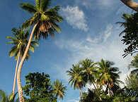 Lissenung Island – Papua Neuguinea