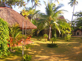Gartenanlage im Ravenala Beach Resort – Moalboal, Philippinen