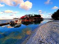 Geleitet von der Tauchbasis Topdive Französisch Polynesien