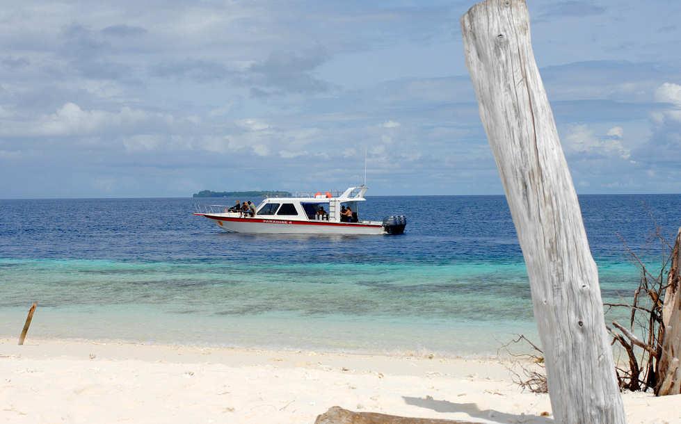 Tauchbasis Papua Paradise Divers