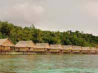 Tauchresort in Raja Ampat – Papua Paradise Resort