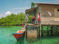Tauchreisen nach Molukken