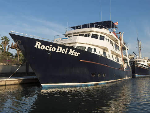 Safariboot Socorro und Sea of Cortez