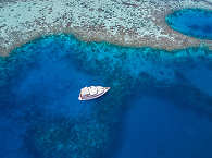 Tauchsafari Malediven – MY Sheena