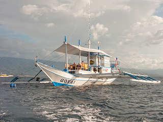 Auf Tauchsafari durch die Visayas – Goyo vor Moalboal, Cebu