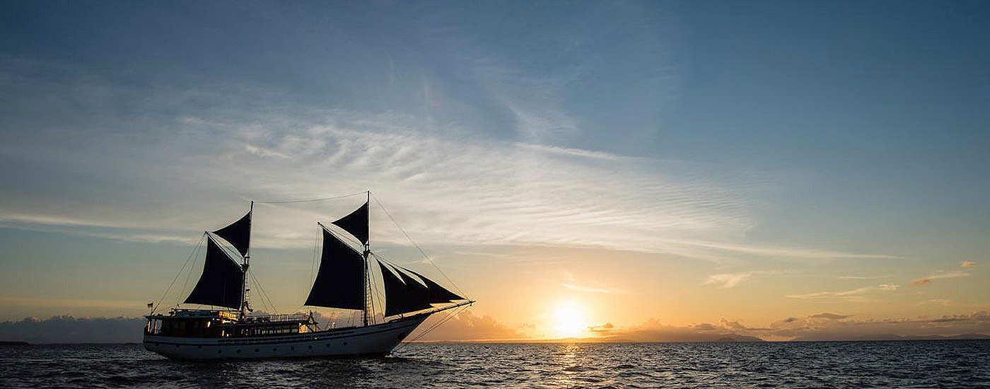 Tauchsafaris mit der MV Samambaia – Raja Ampat, Komodo, Bandasee