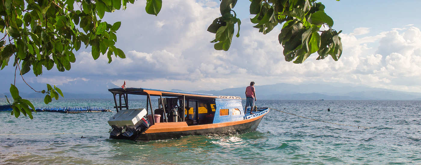 Blick auf's Wasser – Sea Souls Diving Bangka, Sulawesi