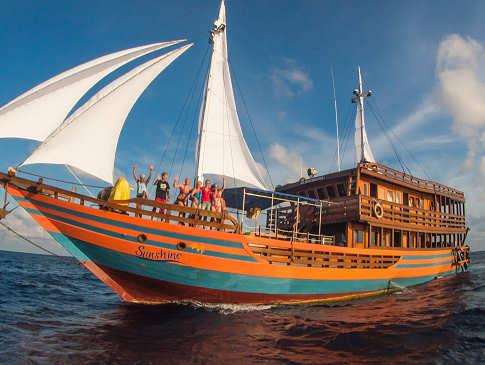 KLM Sunshine – Tauchsafaris Sulawesi und Halmahera