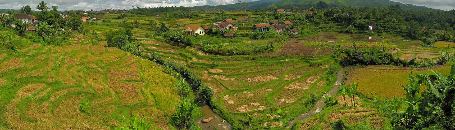 Vulkanisches Minahasa der Hochland