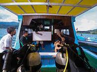 Froggies Divers – Tauchboot