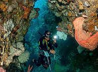 Unterwasserwelten Indonesiens
