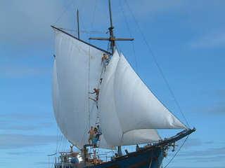 Shakti – Safariboot Raja Ampat
