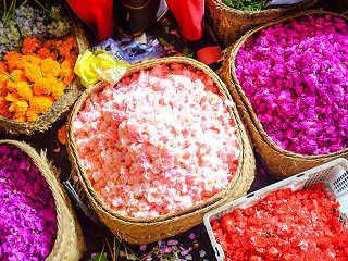 Farbenfrohe Blüten auf balinesischen Markt
