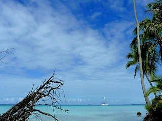 Tauchreisen nach Fakarava – Franz. Polynesien