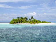 Tauchsafaris Malediven – Scuba Native Tauchreisen