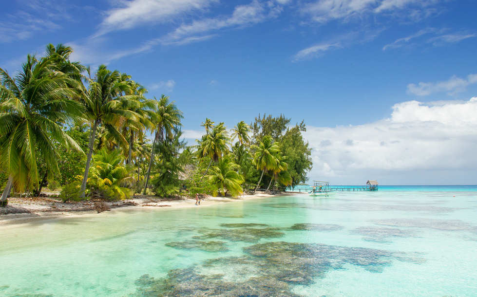 Tauchreisen nach Französisch Polynesien
