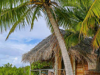 Strandbungalow im Tetamanu Sauvage