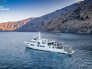 Tauchsafaris Guadalupe – Nautilus Explorer