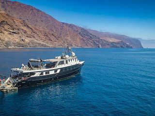 Tauchsafaris Guadalupe – Undersea