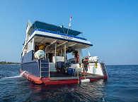 Tauchdeck des Safariboots Raja Ampat Aggressor