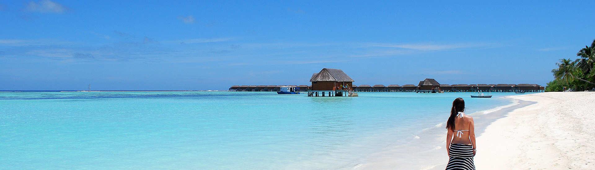 Korallenstrand – Tauchurlaub Malediven