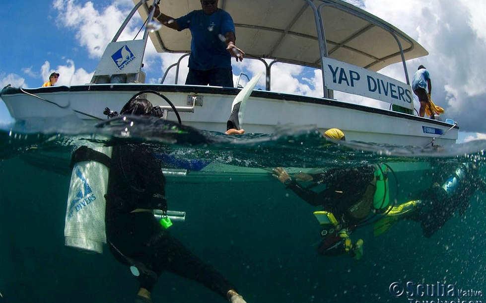 Tauchen mit den Yap Divers